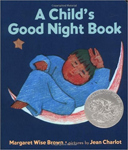 A Child's Good Night Book